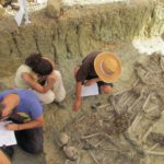 Exhumación del Marrufo.