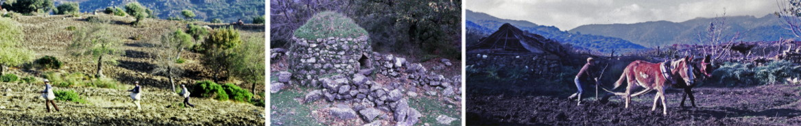 Imágenes de la sección de La Sauceda en la exposición permanente.