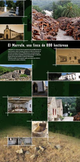 Panel sobre la finca de El Marrufo.